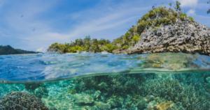Read more about the article Década dos Oceanos