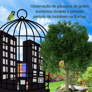 Read more about the article Maratonar séries, cozinhar e observar aves: o aumento do interesse por pássaros de jardim no primeiro lockdown da Covid-19