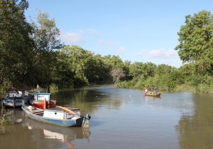 Bragança, Pará (Caeté-Taperaçu protected area). Credit: Rebecca Borges